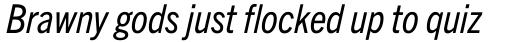 Trade Gothic Next Pro Condensed Italic sample