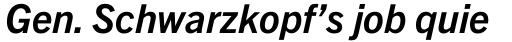 Trade Gothic Next Pro Bold Italic sample