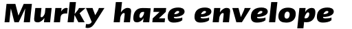 Linotype Ergo W1G Bold Italic sample