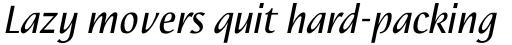Nautilus Text Pro Italic sample