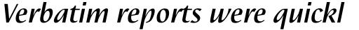 Nautilus Text Pro Medium Italic sample