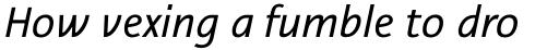 Nautilus Monoline Pro Italic sample