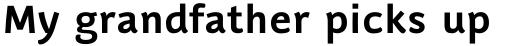 Luba Pro Cyrillic Bold sample