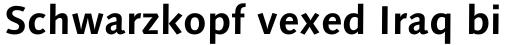 Syntax Next Pro Bold sample