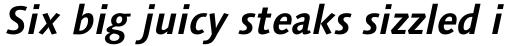 Syntax Next Pro Bold Italic sample