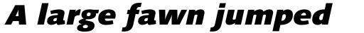 Syntax Next Pro Black Italic sample