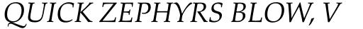 Palatino nova Std Greek Italic sample