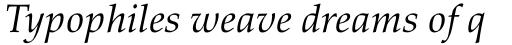 Palatino nova Std Cyrillic Italic sample