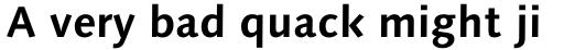 Syntax Next Std Cyrillic Bold sample