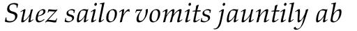 Palatino nova Paneuropean Italic sample