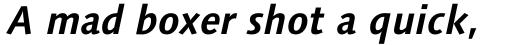 Syntax Next Paneuropean W1G Bold Italic sample