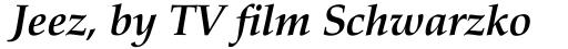 Aldus nova Bold Italic sample