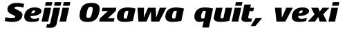 Aeonis Pro Black Italic sample