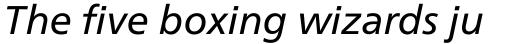 Neue Frutiger Pro Italic sample