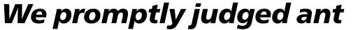 Neue Frutiger Pro Black Italic sample