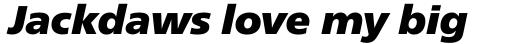 Neue Frutiger Pro ExtraBlack Italic sample