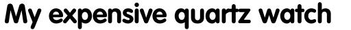 VAG Rounded Pro Cyrillic Bold sample