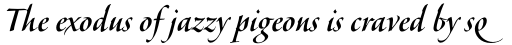 Veljovic Script Pro Cyrillic Medium sample