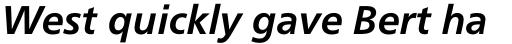 Neue Frutiger Pro Cyrillic Bold Italic sample