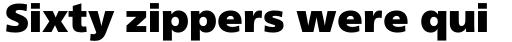 Neue Frutiger Pro Cyrillic ExtraBack sample