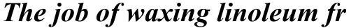 Times New Roman WGL Bold Italic sample