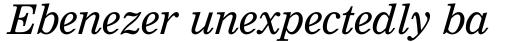 Nimrod WGL Italic sample