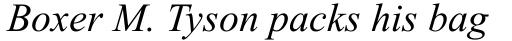 Times New Roman WGL Italic sample