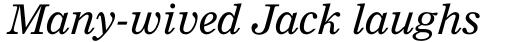 Nimrod Pro Italic sample