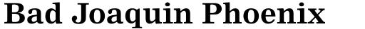 Nimrod Pro Cyrillic Bold sample