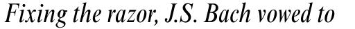Times New Roman Pro Condensed Italic sample