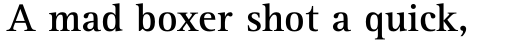 Rotis Serif Std 65 Bold sample
