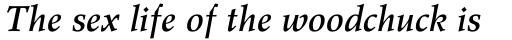 Wile Std Medium Italic sample