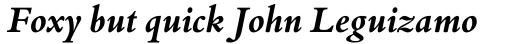 Bembo Book Pro Bold Italic sample