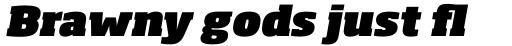 Soho Pro Ultra Italic sample