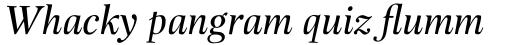 Buccardi Std Italic sample