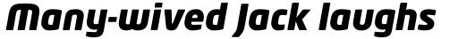 Neo Tech Pro Black Italic sample
