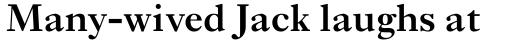 Ehrhardt Pro SemiBold sample
