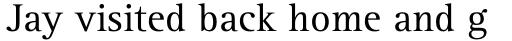 Rotis Serif Pro 55 Roman sample