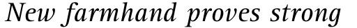 Rotis Serif Pro 56 Italic sample
