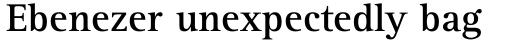 Rotis Serif Pro 65 Bold sample