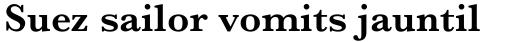 Baskerville Pro SemiBold sample