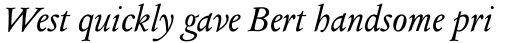 Columbus Pro Italic sample