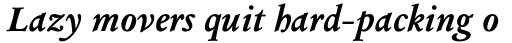 Columbus Pro Bold Italic sample