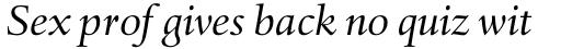 Haarlemmer Pro Italic sample
