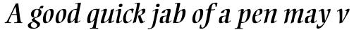 Ellington Std Italic sample