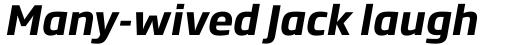 Soho Gothic Std Bold Italic sample