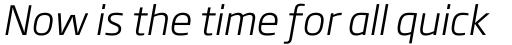 Soho Gothic Pro Light Italic sample