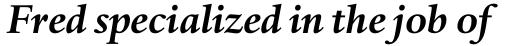 Haarlemmer Std Bold Italic sample