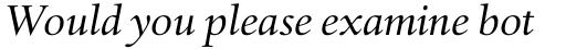 Haarlemmer Std Italic sample