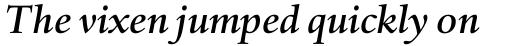 Haarlemmer Std Medium Italic sample